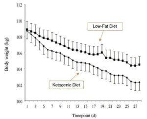 ketogene diät grafik fettverlust