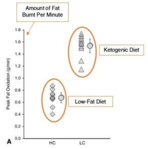 ketogene diät fettverbrennung